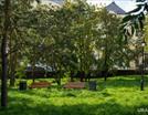Парк «Серебряные ключи» появится в Тюмени.